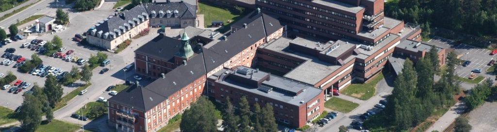 STORT ENGASJEMENT: Gruppa for å bevare Elverum sjukehus har skapt stort engasjement. Foto: Sykehuset Innlandet