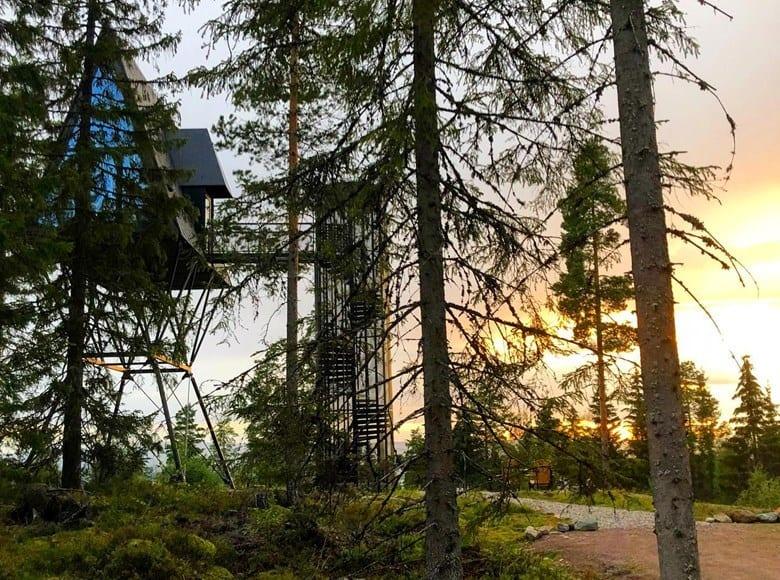 I BESTE SENDETID: Pan Tretopphytter og Åsnes Finnskog kan du se på TV-skjermen i Farmen Kjendis sin magasindel onsdag kveld. Foto: Pan Treetopcabins