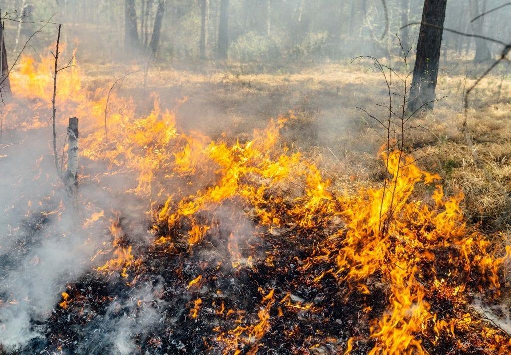 brann Foto: Glåmdal brannvesen