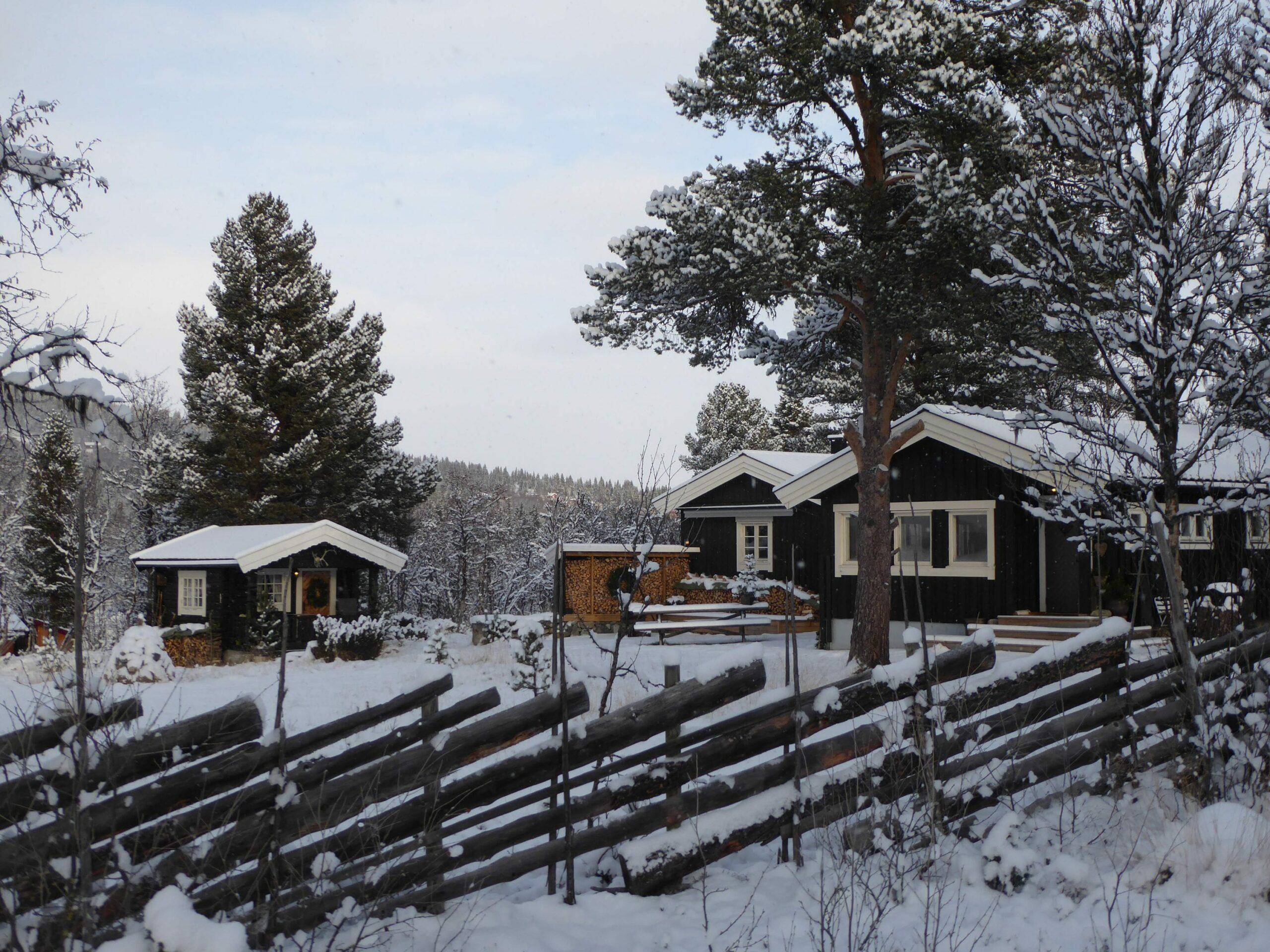 KREVER ENDRING: Norsk Hyttelag reagerer på det nye forbudet og krever endring. Den nasjonale interesseorganisasjonen har drøye 600.000 hytteeiere. Foto: Norsk Hyttelag