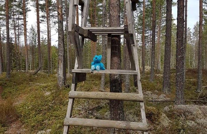 NYE EVENTYR: Etter drøye to måneder i dvale er Barnas Turlag klare for nye turer i skog og mark - og med alle smittevernregler i behold. Foto: Barnas Turlag Solør