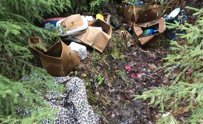 BADEPLASS: Folk kaster fra seg søppel i naturen, som her på stien til badeplassen Kulpen på Kjellmyra. Foto: Hold Solør Rent