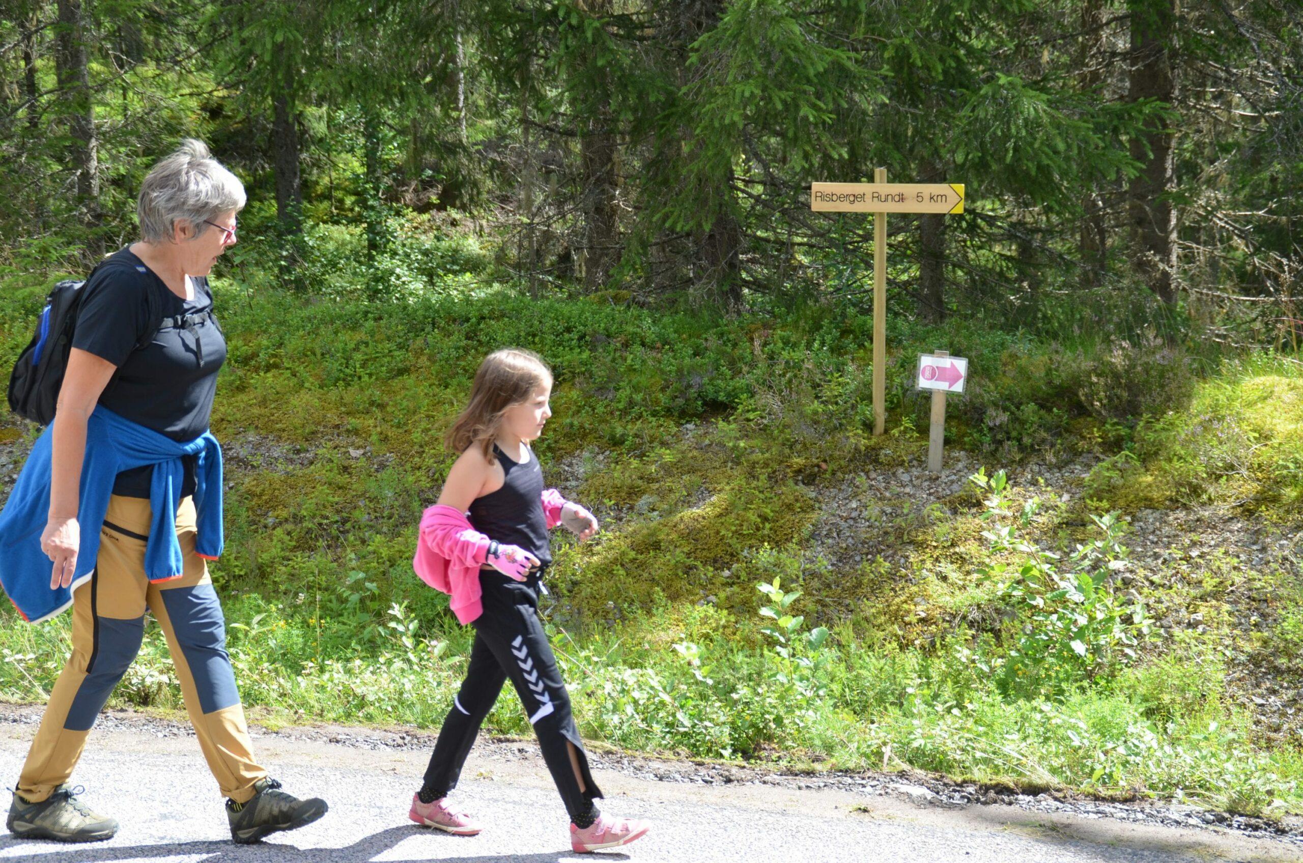 OPPTUR I NEDTUR-ÅRET: Risberget Rundt har nesten like mange deltakre i 2020 som toppåret 2019. Ordningen med å gå løypa uten tid vil bli videreført også neste år.