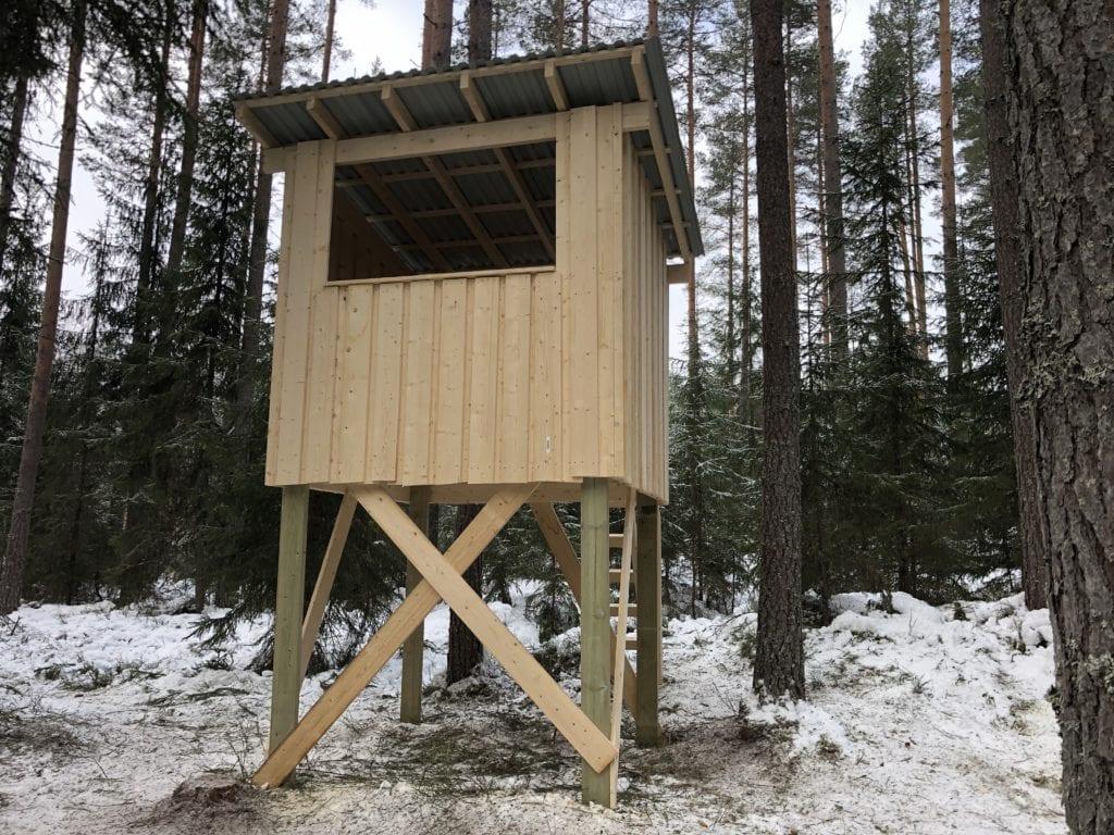 KLAR FOR JAKT: Fra dette jakttårnet håper Sønsterud-elevene snart å kunne felle et villsvin.