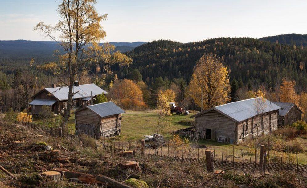FREDES: Hytjanstorpet på Grue Finnskog har nå blitt fredet av Riksantikvaren. Foto: Trond A. Isaksen, Riksantikvaren.
